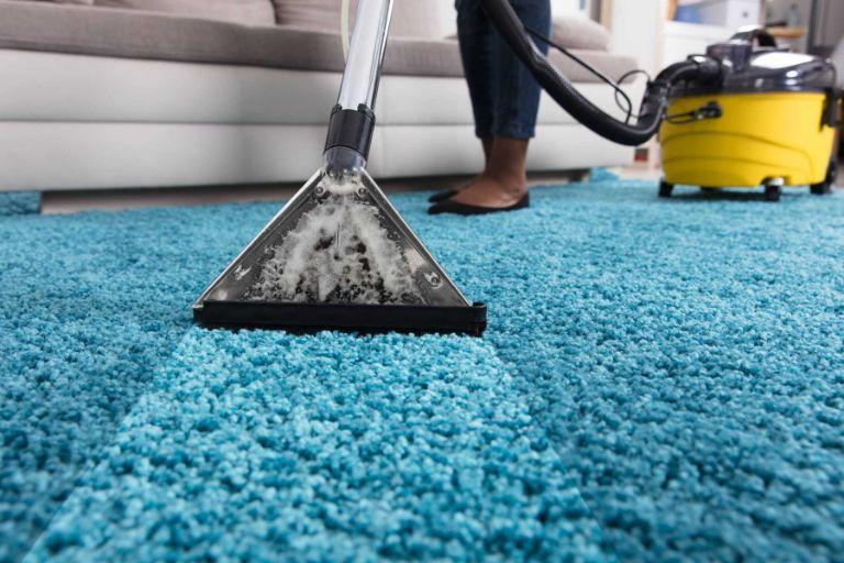 Professional Carpet steam clean