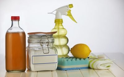 Green Cleaning: Ten Facts You Should Know